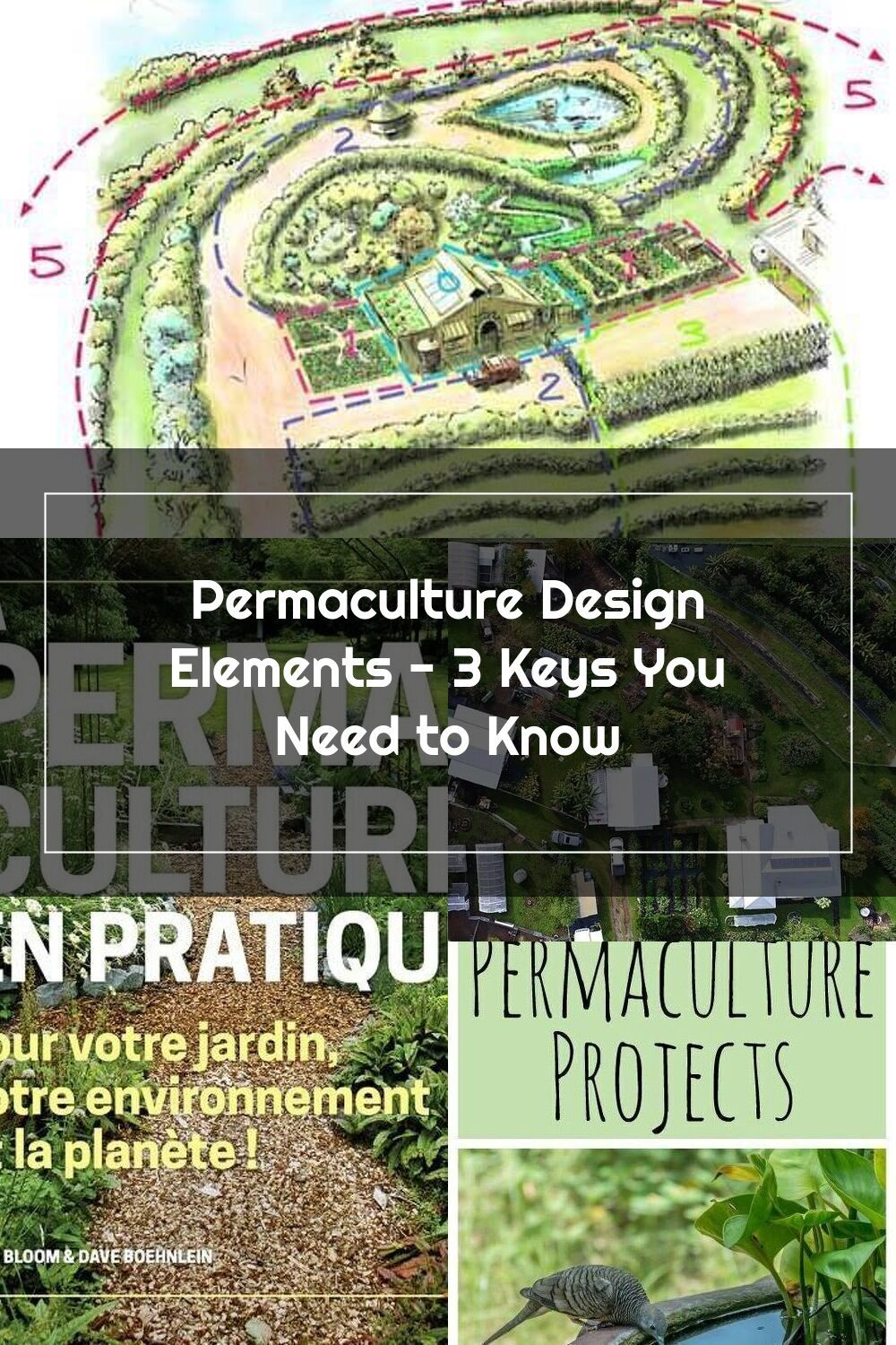 Permaculture Design 3 Key Elements You Need To Know Plus An Introduction In 2020 Permaculture Design Permaculture Design