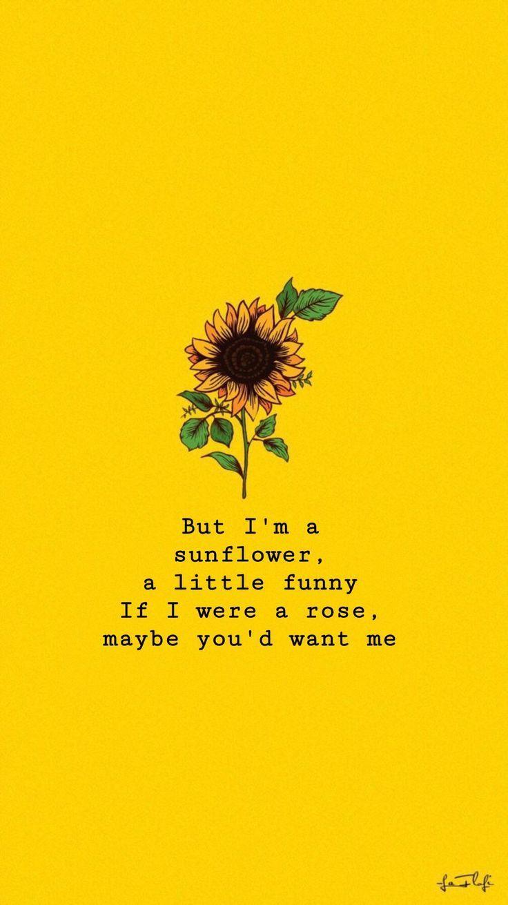 Sunflowers Sierraburgessisaloser Wallpaper Sierraburgessisaloser Th Sonnenblume Zitate Bildschirmhintergrund Spruche Spruche Fur Bildschirmhintergrunde