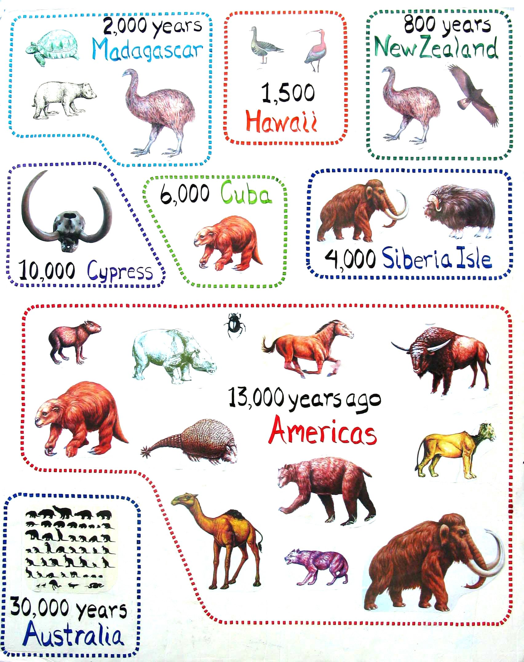Extinct animals of the americas including cheetahs and pronghorn prehistoric also rh pinterest