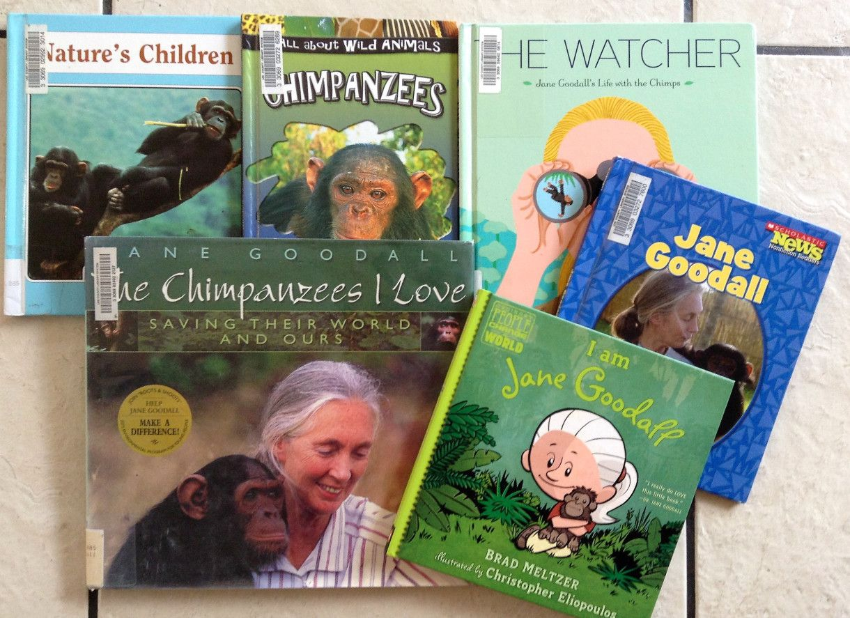 Jane Goodall For Kids Lesson Plans Lapbook And