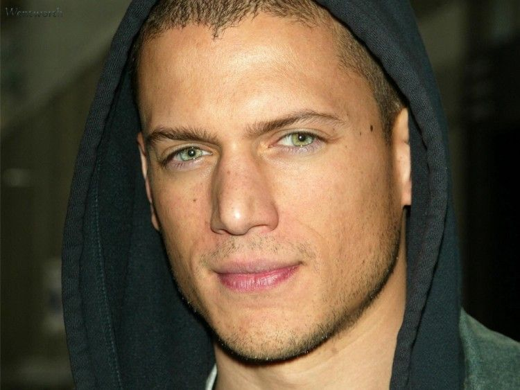 wentworth miller wife