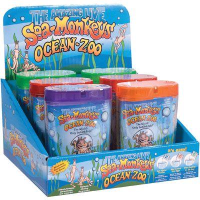 Sea Monkey Ocean Sea Life 12 99 Http Catalog Karens4toys Com