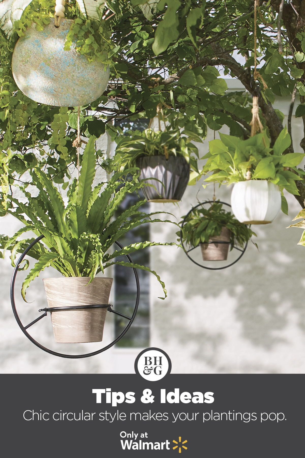 Shop By Brand In 2020 Home Garden Garden Hanging Plants