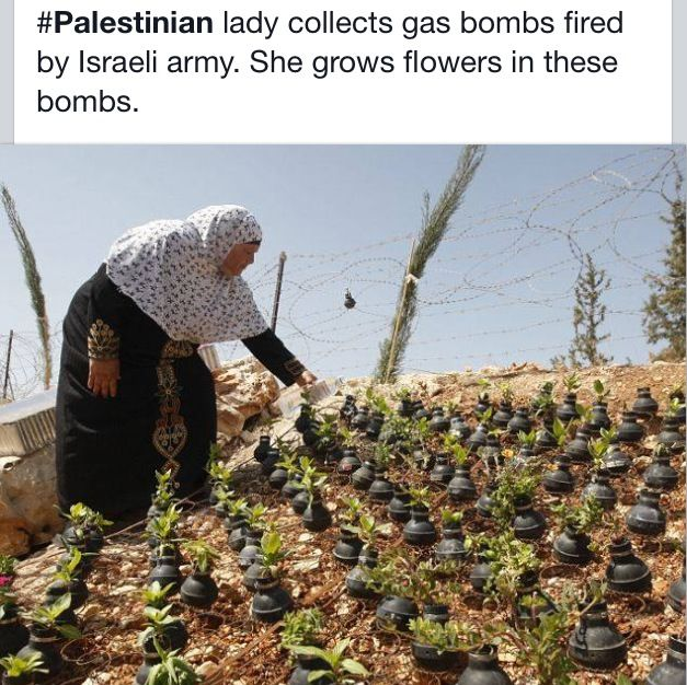 Palestinian woman collecting bombs fired by Israel army and making them into something beautiful.  Building a wall out of bricks thrown at you by people #Palestine #Israel