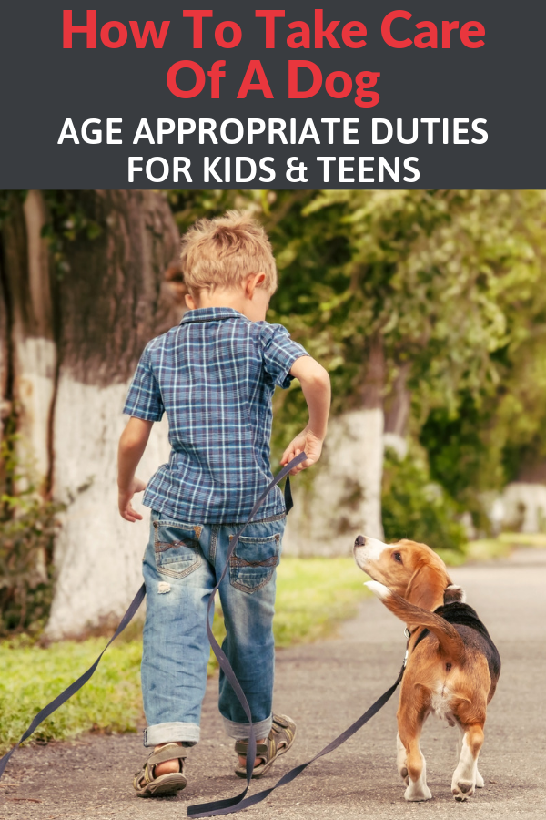 How To Take Care Of A Dog Age Appropriate Dog Responsibilities For Kids Dogs And Kids Dog Care Dog Ages