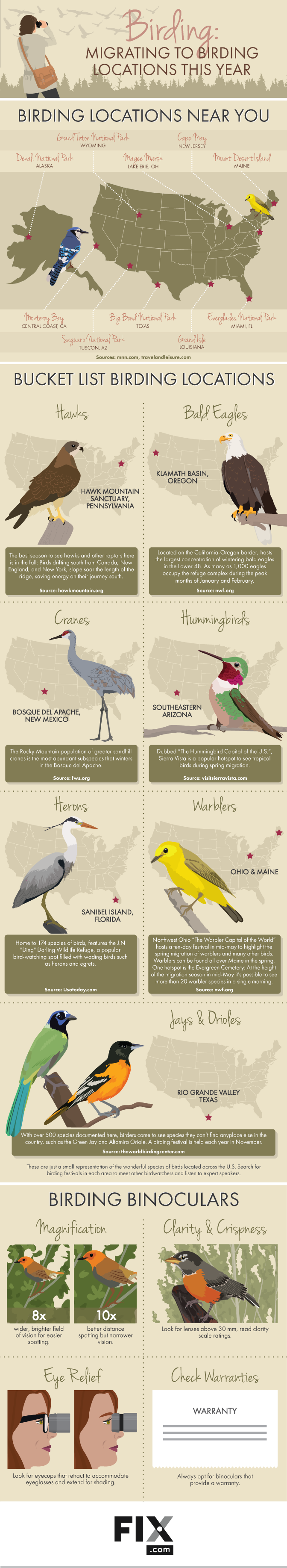 Birding: Migrating to Birding Locations This Year #Infographic