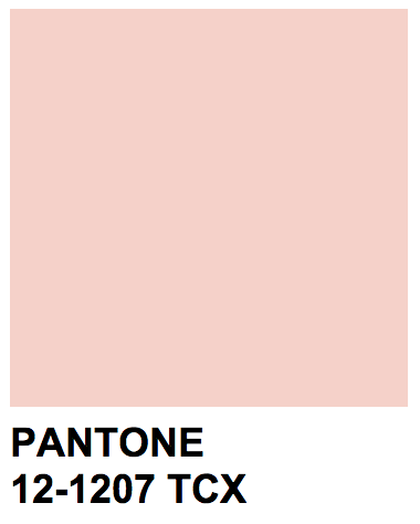 Pantone 12-1207 TCX Color Name: Pearl Blush | Fall Wedding