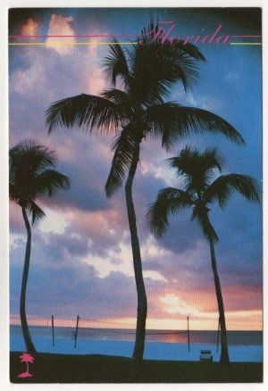 Sunset At A Beautiful Florida Beach Postcard Photo By Morris Fostoff Fl Palm Trees Volleyball 0529 Florida Beaches Beautiful Beaches Sunset