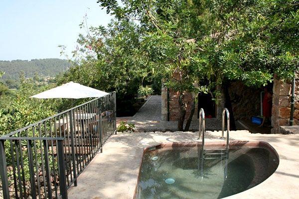 Small Triangle Pool Small Inground Pool Small Garden Design Small Pool Design