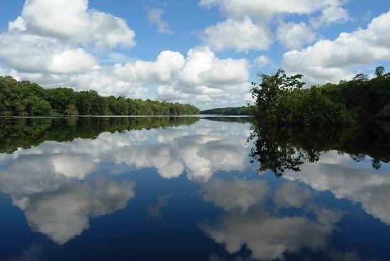 Parque Nacional Do Jau Amazonas Parques Nacionais Parks Parques