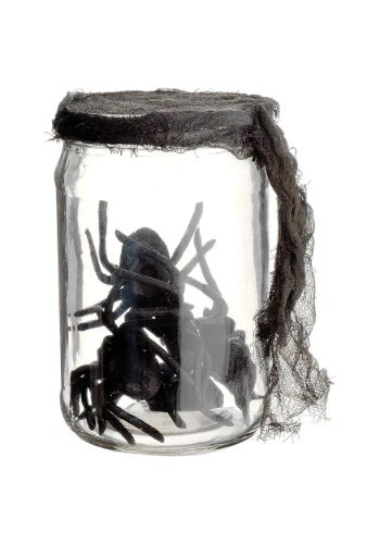 http://images.halloweencostumes.com/products/24895/1-2/55-inch-glass-jar-w-spiders.jpg