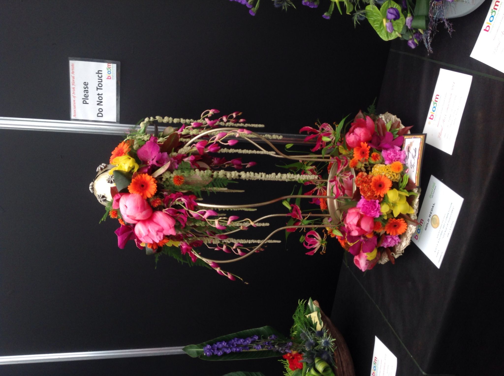 Another winner at Bloom Dublin 2014