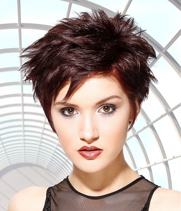 Short Spiky Hairstyles Short Brown Hairstyles  Hair & Beauty  Pinterest  Search