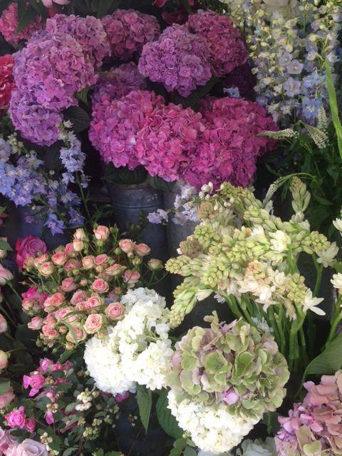 Notting Hill flower shop Flowers, Floral, Bloom