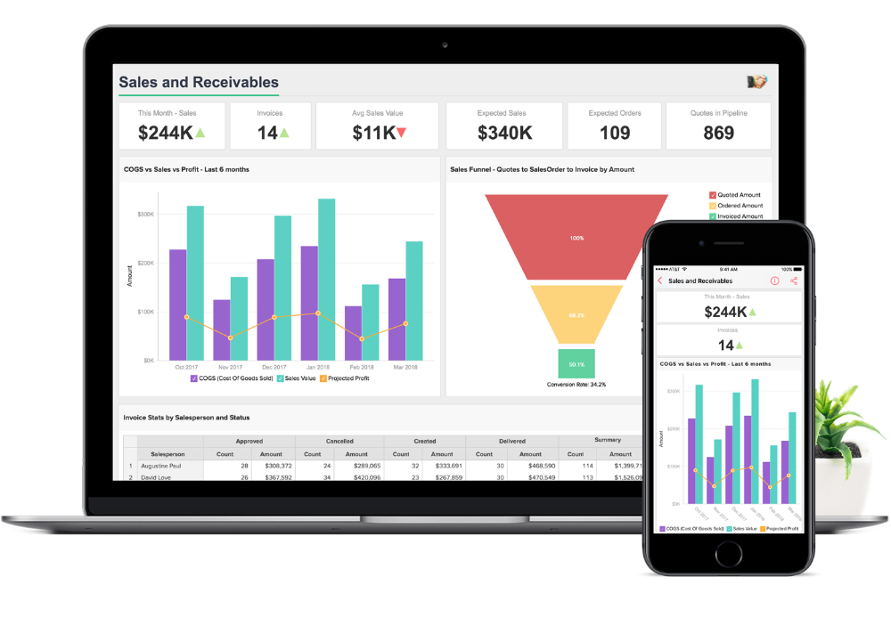 Business Dashboard Software Business Dashboards Tool