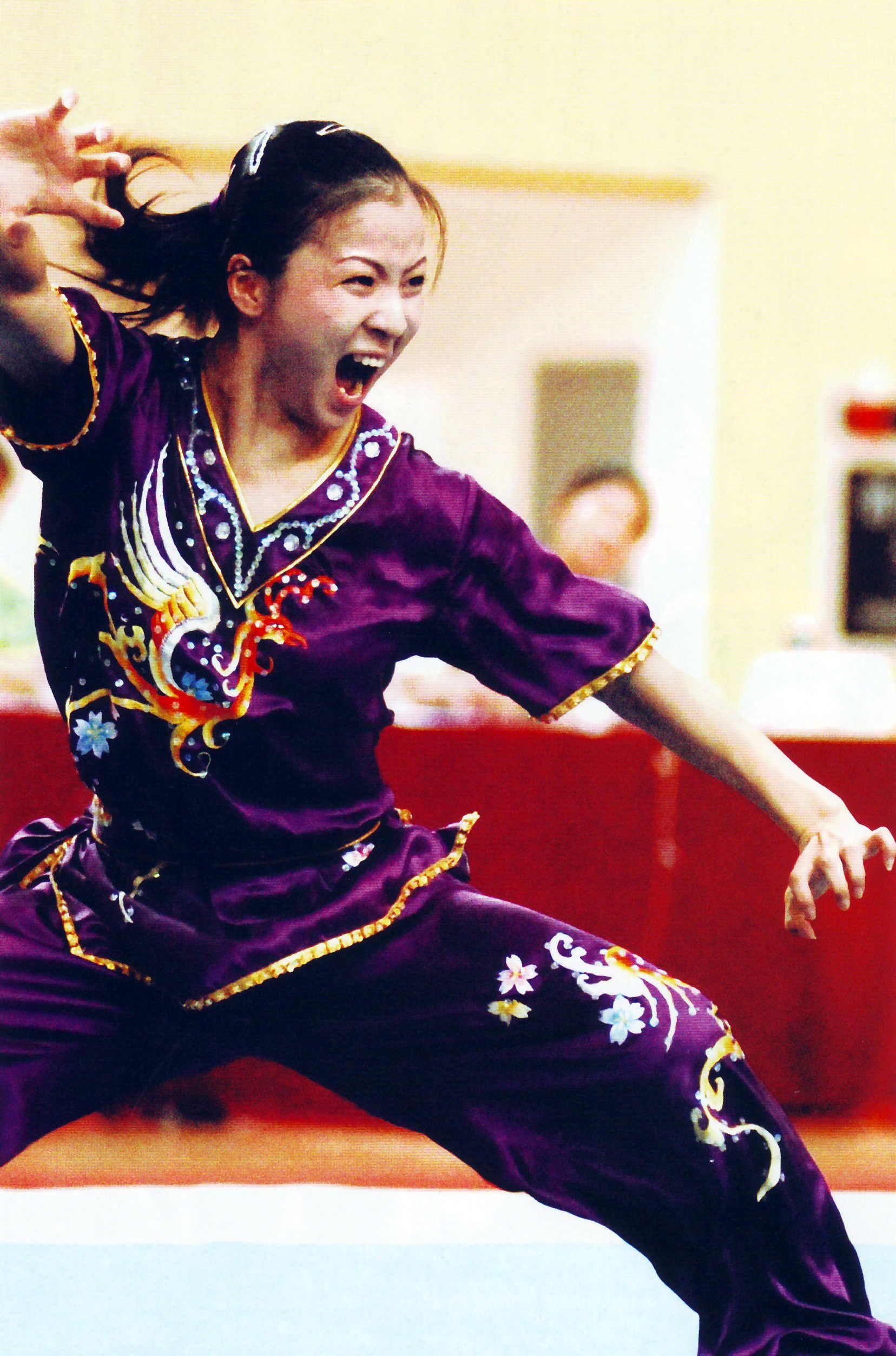 Kung Fu Eagle Style Hung Gar   Tiger &...