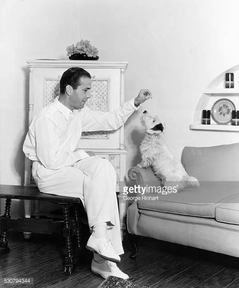 0 Humphrey Bogart Plays with Dog