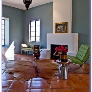 Terracotta Floor Tiles What Color Walls Images Home Flooring