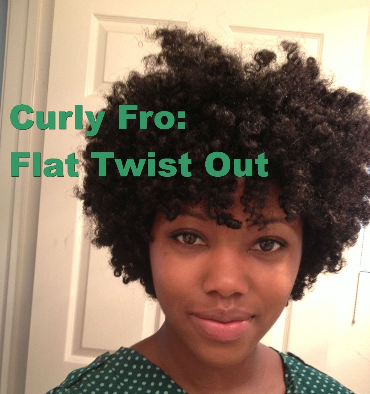 Excellent 1000 Images About Natural Hair Twist Out City On Pinterest Short Hairstyles Gunalazisus