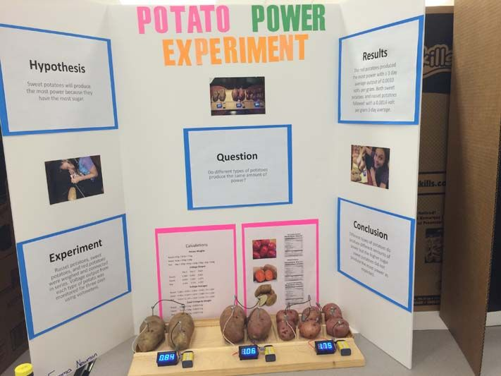75 science fair project ideas science fair  fair