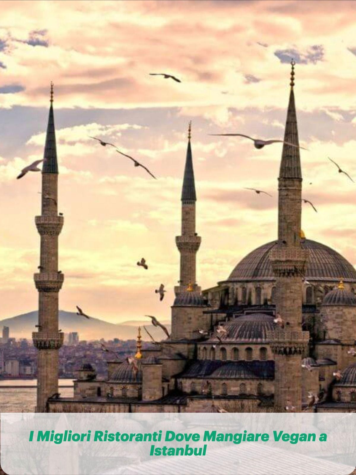 I Migliori Ristoranti Dove Mangiare Vegan Ad Istanbul nel ...