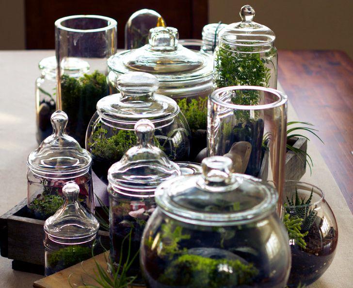 DIY: Make your own tiny terrarium garden that'll stay green all winter long Terrarium Necklaces – Inhabitat - Green Design, Innovation, Architecture, Green Building