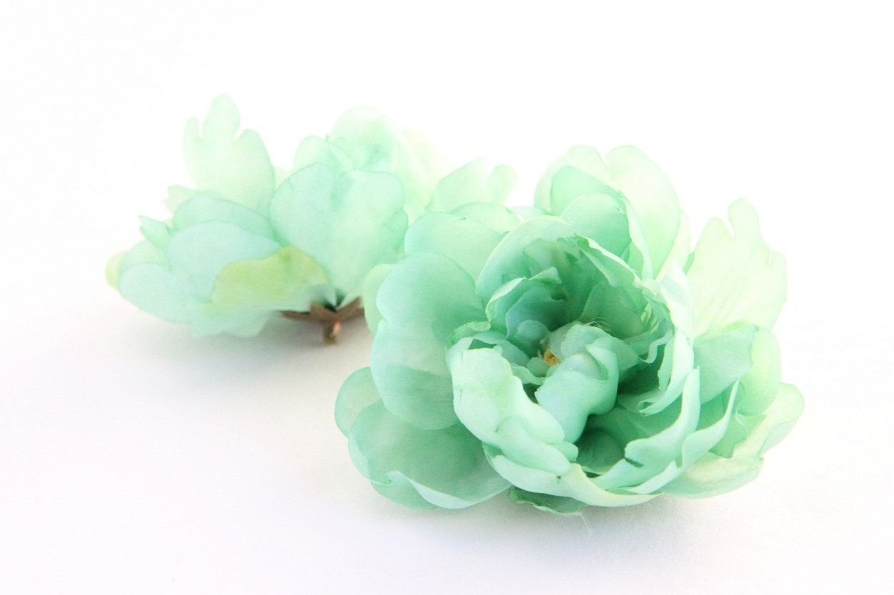 Pin by Jewel\'s on SEA FOAM AND MINT GREEN | Pinterest | Sea foam and ...