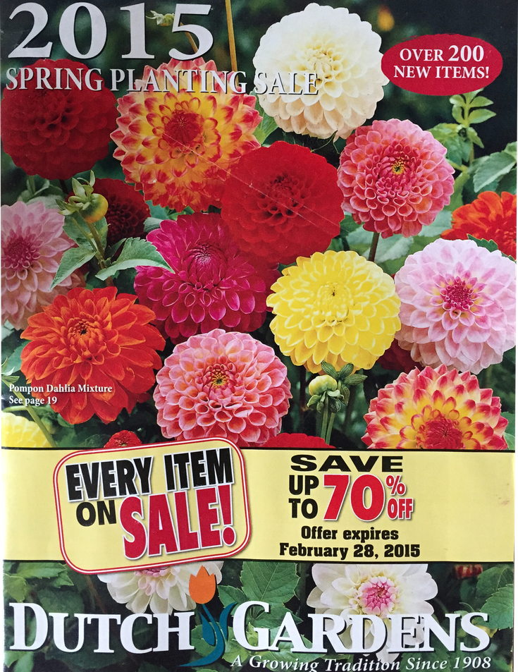 Attractive 68 Free Seed And Plant Catalogs: Dutch Gardens Flower Catalog