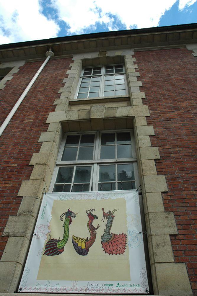 """Exposition """"Josep Baqué, une biodiversité imaginaire"""" en façade d'AgroParisTech, le long de la rue Claude Bernard (Paris 5e). ©Musée du Vivant - AgroParisTech – à AgroParisTech."""