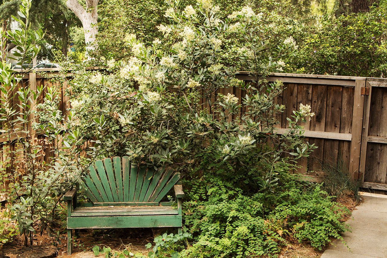 Enchanting Eden Garden Pasadena Illustration - Beautiful Garden ...
