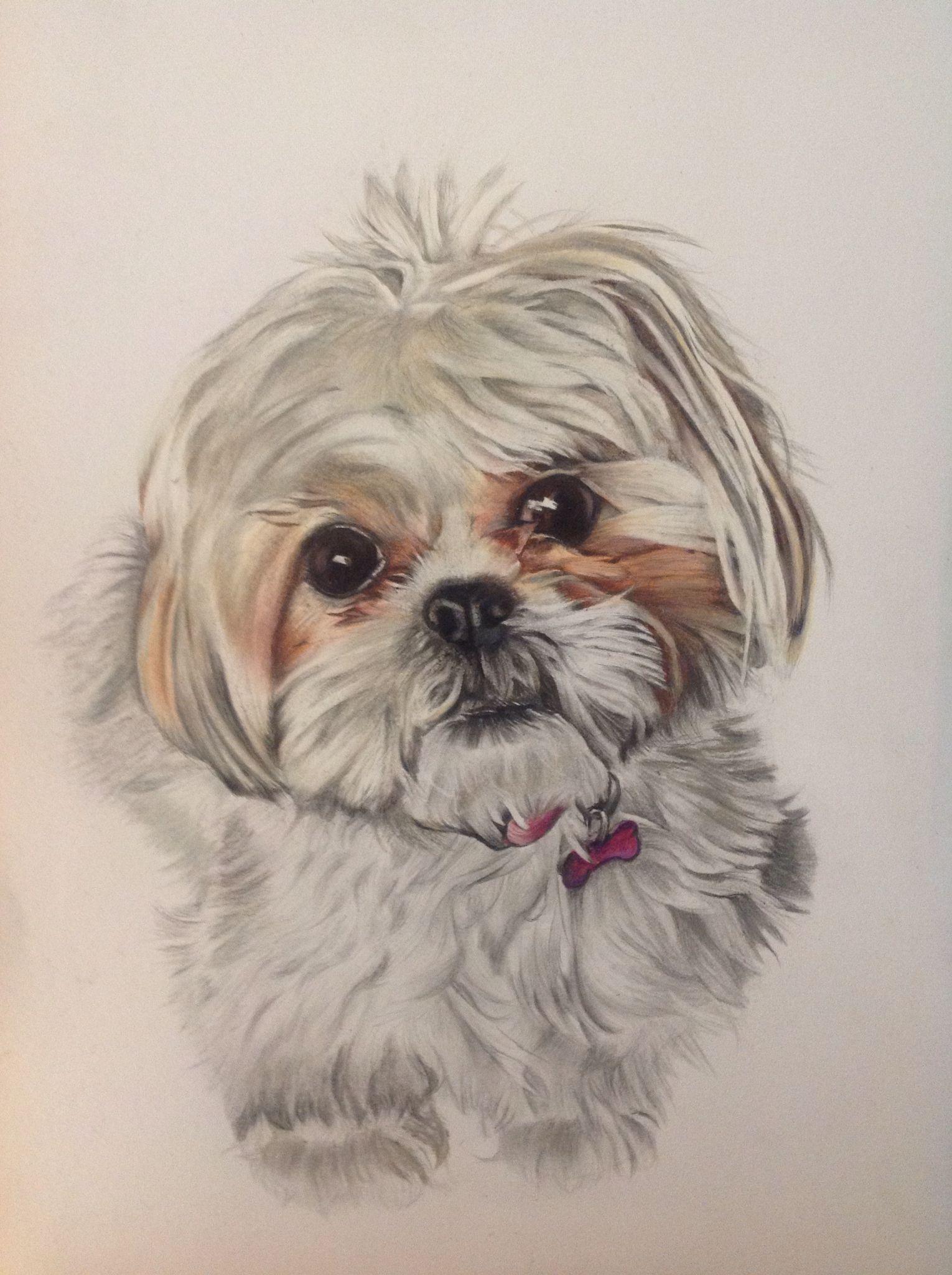 Pin Em Watercolor Painting Art