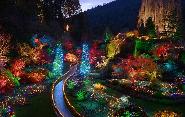 41d1137542720a7229efbfc2a58720e1 - The Butchart Gardens Christmas Lights Tour