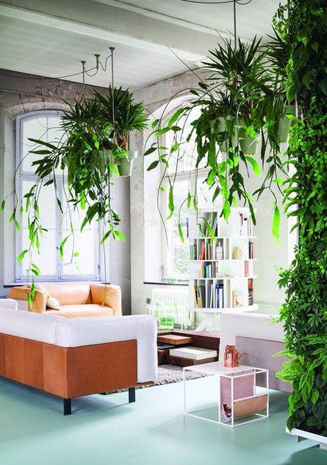 woontrend botanisch interieur - Roobol | Woontrend botanisch ...