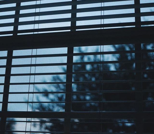 And Because Of Him Looking Through My Blinds Every Morning Became A Habit