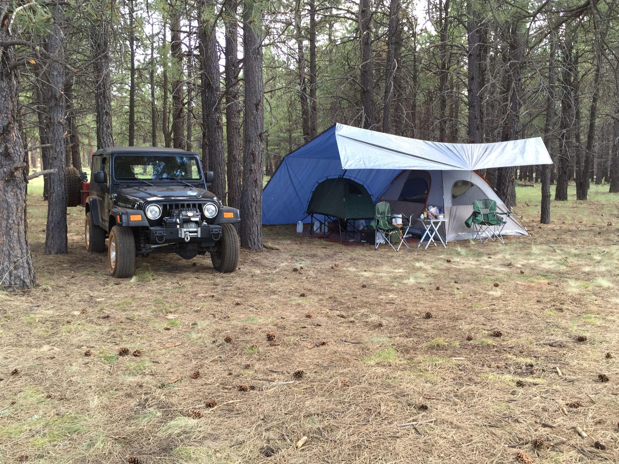 Camping in Flagstaff!  Beautiful. So much fun.