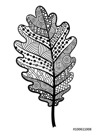 Zentangle Black And White Leaf Of The Tree Oak With Images