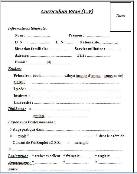 Curriculum Vitae Cv Example French