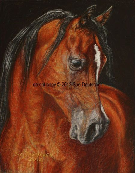 Arabian Horse art 8x10 print from painting by Sue Deutscher, signed, matted - $9.99 - An 11x14 print is also available - the original is available at http://suedeutscher.com