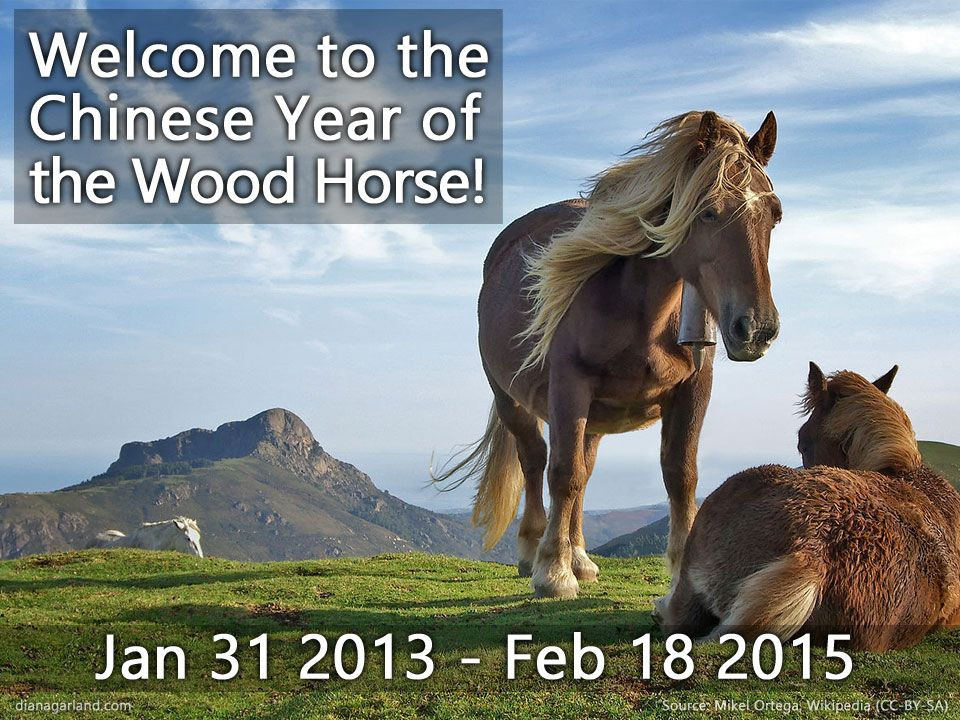 to the Chinese Zodiac Year of the Horse! Today