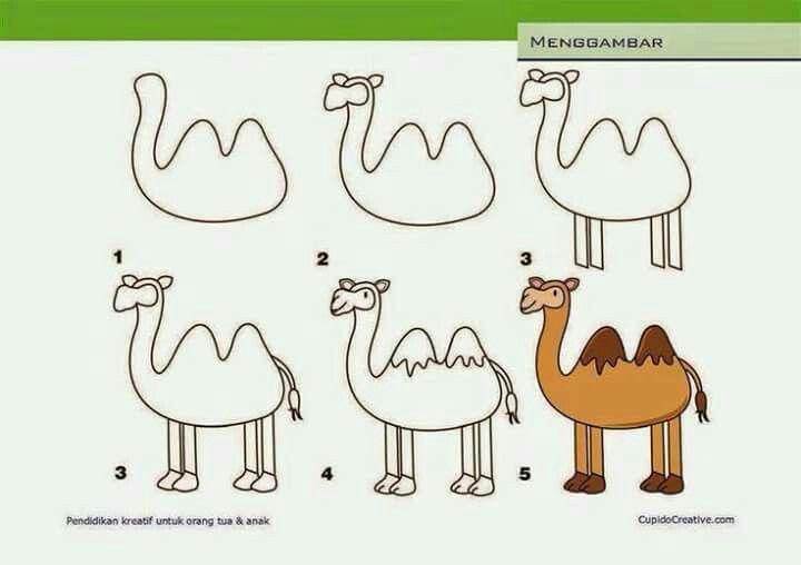 Camello Dibujos Para Ninos Dibujos Faciles Para Principiantes Dibujo Paso A Paso