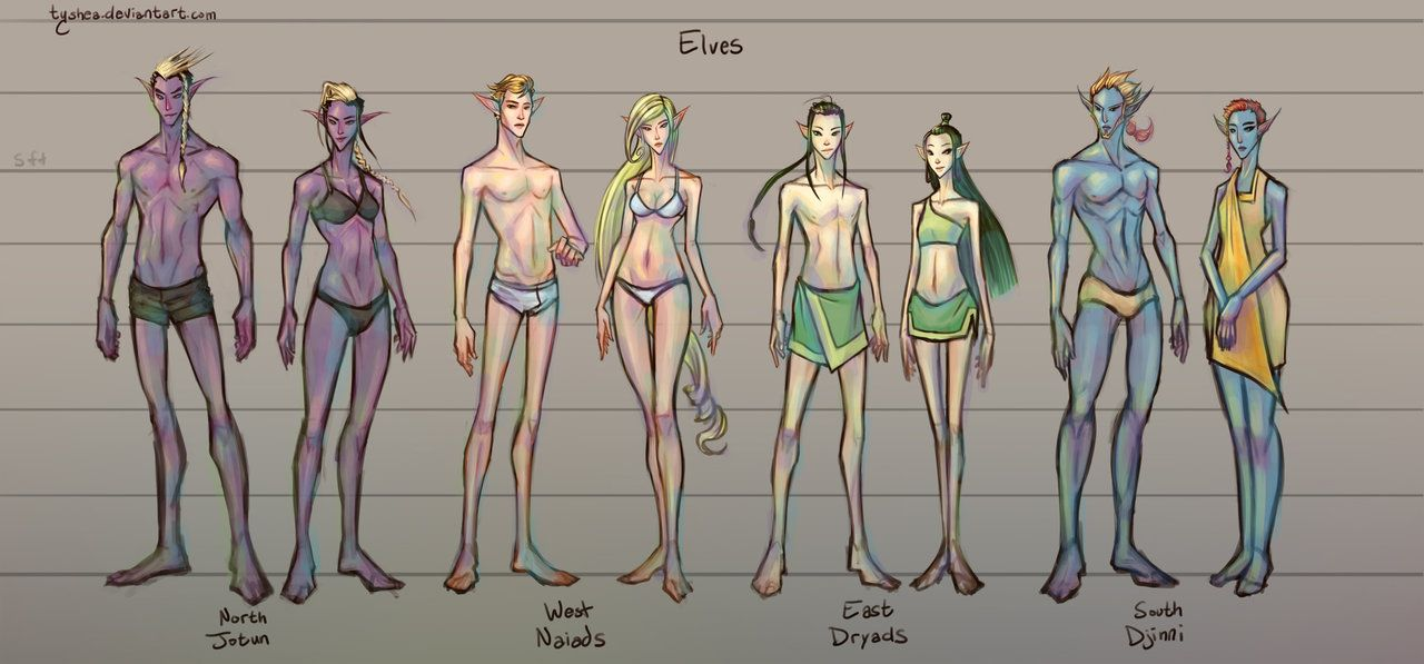 06b052dcfc249 Fantasy Races   2 4  Elves by Tyshea male and female elf half-elf race  player character npc chart