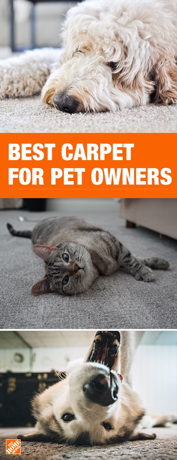 Protect your carpet without sacrificing the comfort your