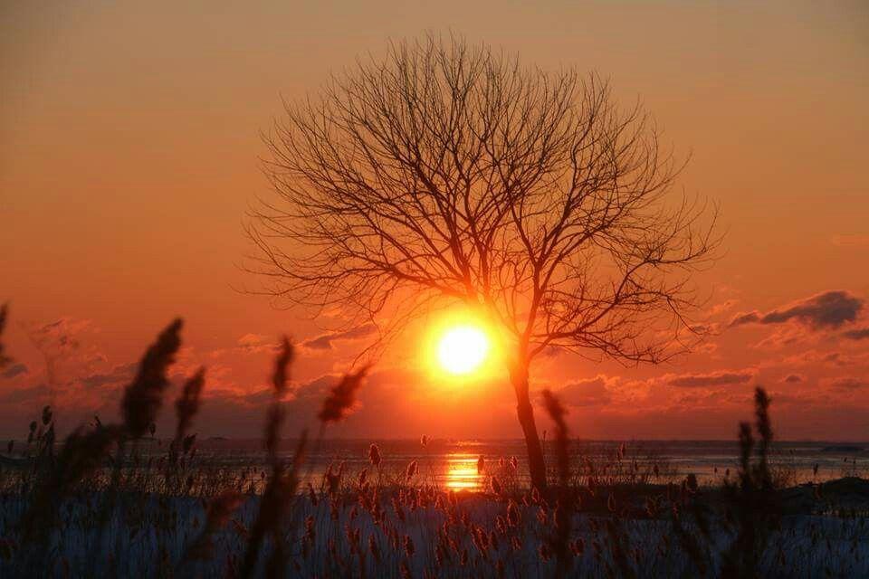 Sunset  photo by:  William Koph