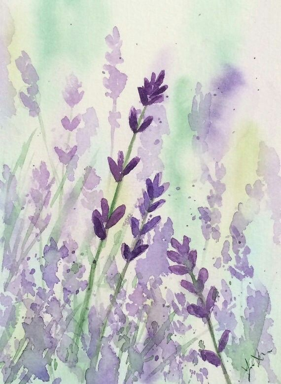 Watercolour Lavender Watercolor Flowers Floral Watercolor Flower Painting