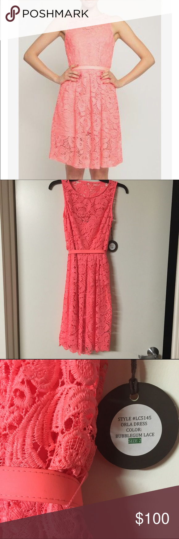 Eva Franco Orla Dress Bubble Gum Lace Fit & Flare Sample Size 2, NWT | bright coral lace | sleeveless | includes slip and belt of same color | fit and flare style / a-line Eva Franco Dresses Midi
