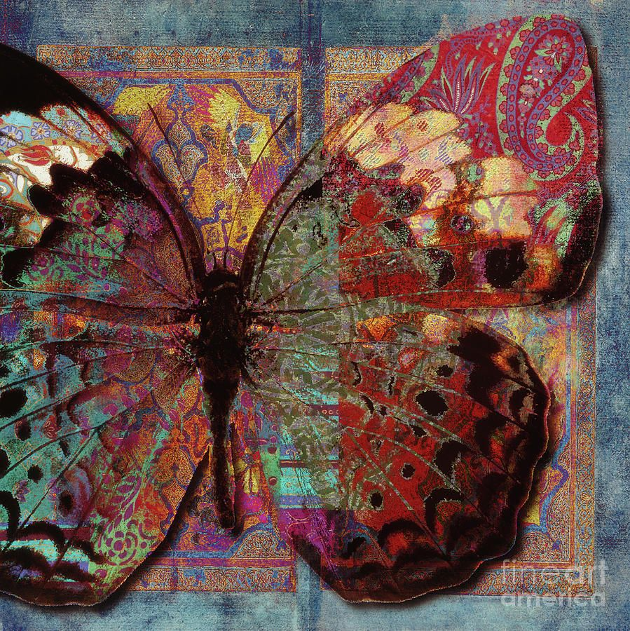 Butterfly Painting - Chelsea by Mindy Sommers