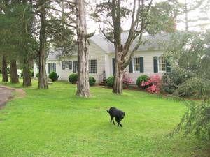 Richmond Va Apts Housing For Rent Craigslist Renting A House Richmond Rent