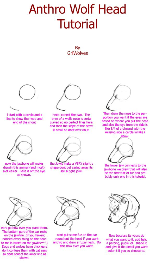 how to draw a furry head