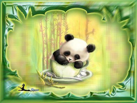 Cute Panda Bear In A Cup Desktop Nexus Wallpapers Cute Panda Wallpaper Panda Wallpapers Panda Bear