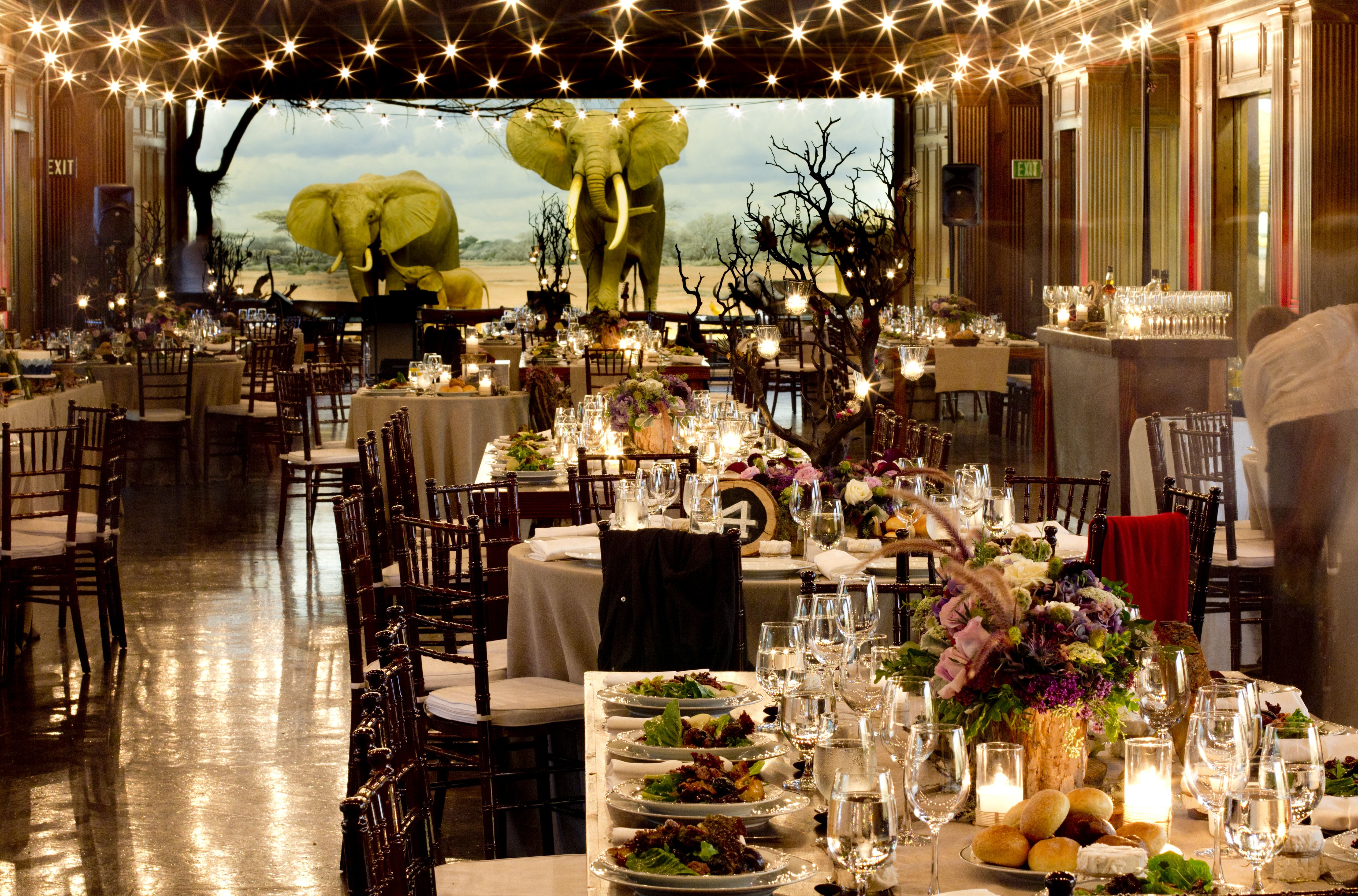 Natural History Museum Of Los Angeles County And Other Unique Wedding Venues Read Detailed Info On Reception Locations